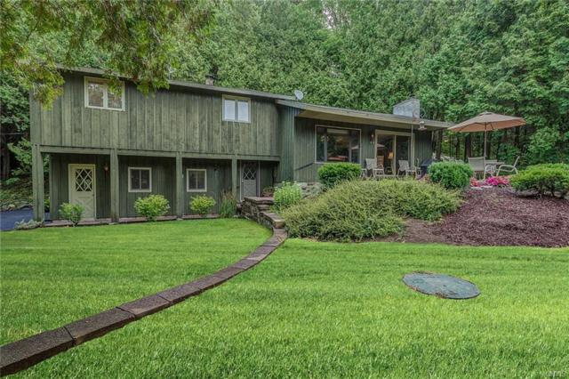 6448 Newell Hill Road, Lafayette, NY 13084 (MLS #S1204047) :: Robert PiazzaPalotto Sold Team