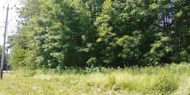 0 Nys Route 13 W, Vienna, NY 13308 (MLS #S1204163) :: Robert PiazzaPalotto Sold Team