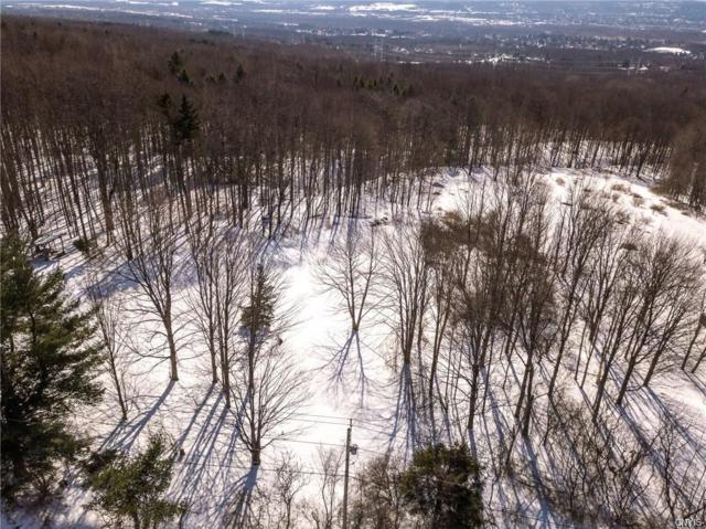 0 Smith Hill Road, Deerfield, NY 13502 (MLS #S1205049) :: 716 Realty Group
