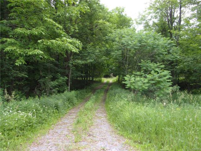 14575 Military Road, Hounsfield, NY 13685 (MLS #S1207740) :: 716 Realty Group