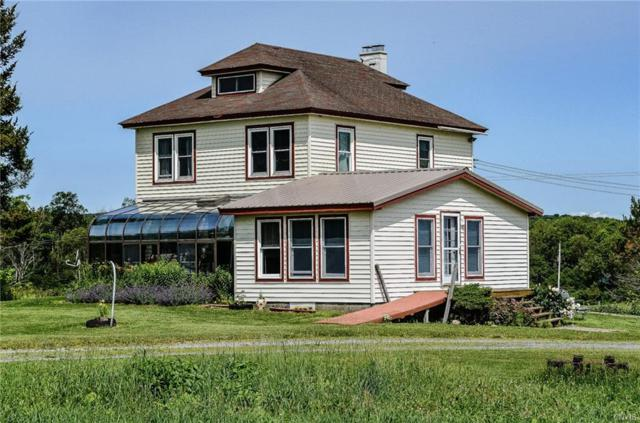 10318 Beaver Meadow Road, Remsen, NY 13438 (MLS #S1208191) :: Thousand Islands Realty