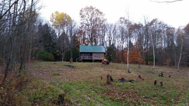 129 Griffin Road, German Flatts, NY 13407 (MLS #S1208318) :: Updegraff Group