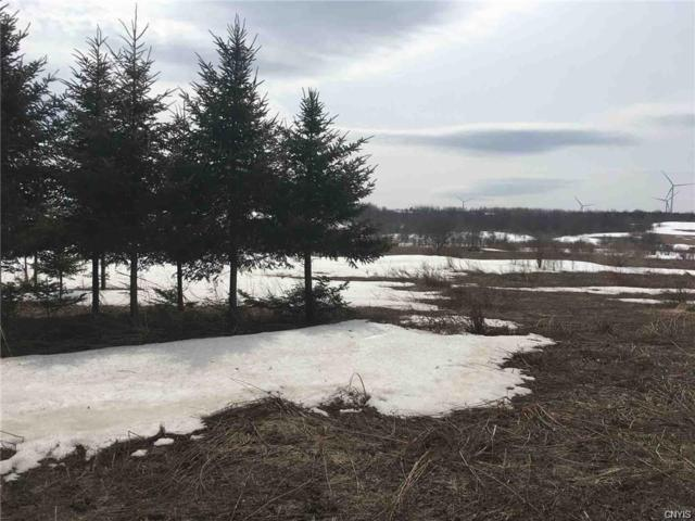 0 State Route 168, German Flatts, NY 13407 (MLS #S1209095) :: Updegraff Group