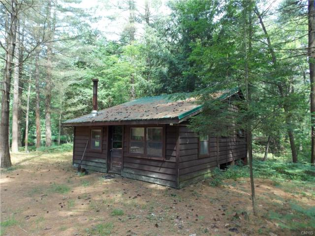 6736 Independence Drive, Watson, NY 13343 (MLS #S1209271) :: Thousand Islands Realty