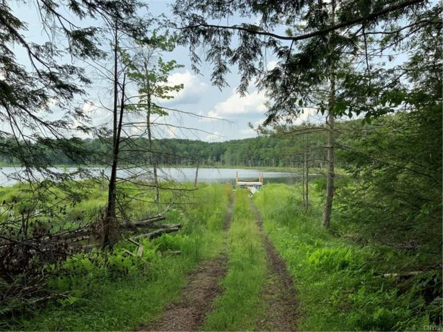 00 State Route 69, Parish, NY 13131 (MLS #S1209609) :: MyTown Realty
