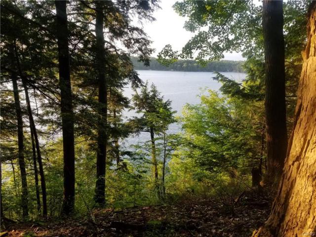 0 Camp Tousley, Theresa, NY 13679 (MLS #S1210428) :: Thousand Islands Realty