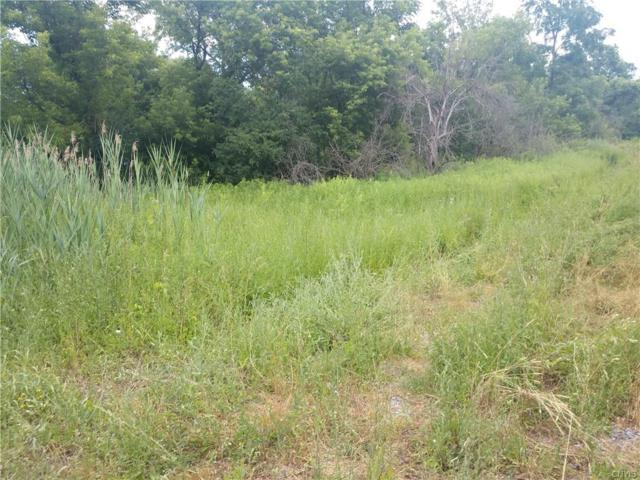 Lot #2 Warners Road, Camillus, NY 13031 (MLS #S1210821) :: The Chip Hodgkins Team