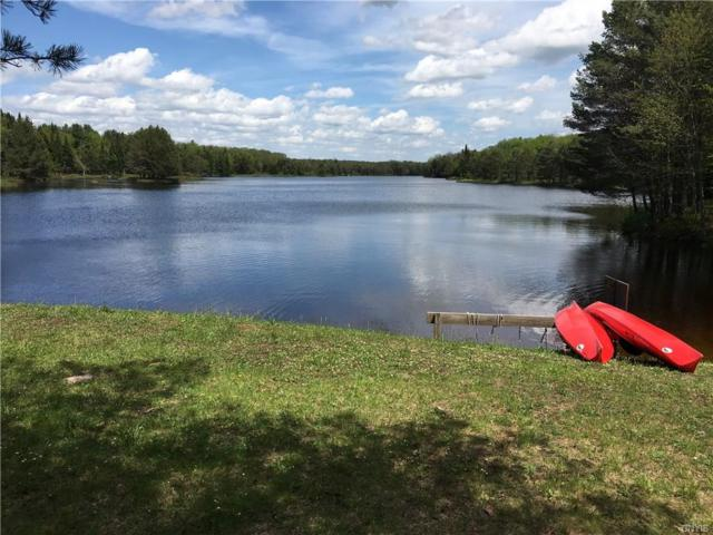 178 Little Beaver Lake Road, Forestport, NY 13338 (MLS #S1210869) :: Thousand Islands Realty
