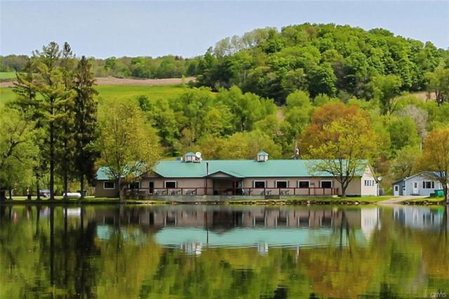 1307 E Lake Road, Summerhill, NY 13045 (MLS #S1211057) :: MyTown Realty