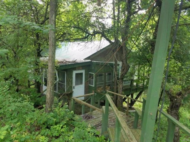 9042 Parker Road, Campbell, NY 14821 (MLS #S1211094) :: 716 Realty Group