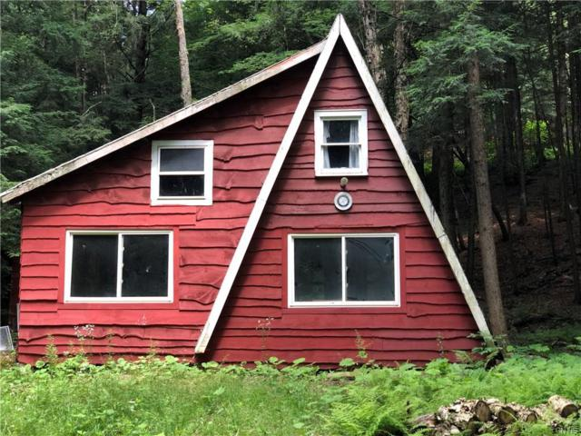130 Bacon Brook Road, Oppenheim, NY 13329 (MLS #S1211529) :: Thousand Islands Realty