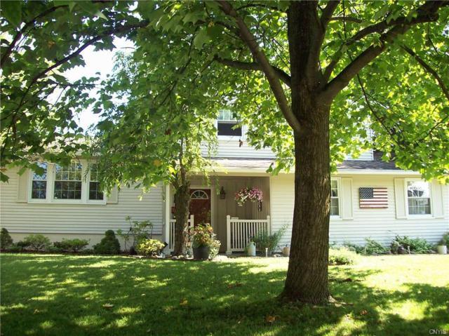 7345 Cedar Post Road, Clay, NY 13088 (MLS #S1211884) :: The Chip Hodgkins Team