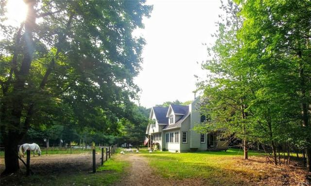 101 Lewis Road, Constantia, NY 13028 (MLS #S1214493) :: 716 Realty Group