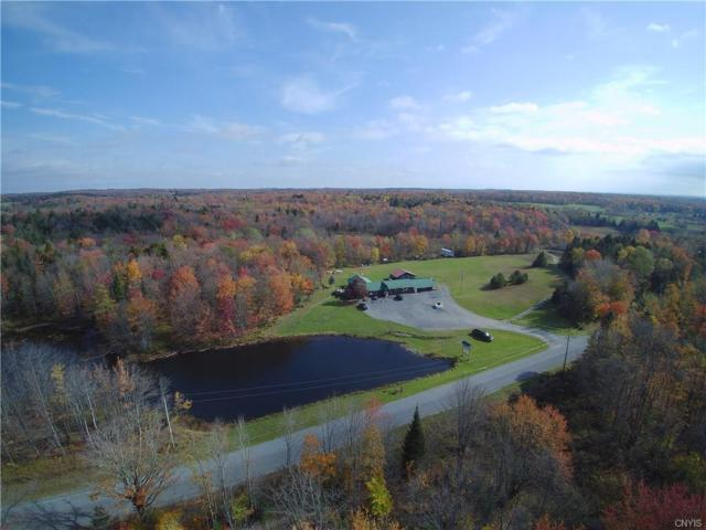1838 Fish Creek Road, Lewis, NY 13489 (MLS #S1214629) :: Updegraff Group