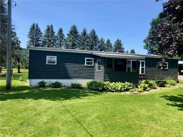1773 State Route 13, De Ruyter, NY 13052 (MLS #S1214955) :: The Chip Hodgkins Team