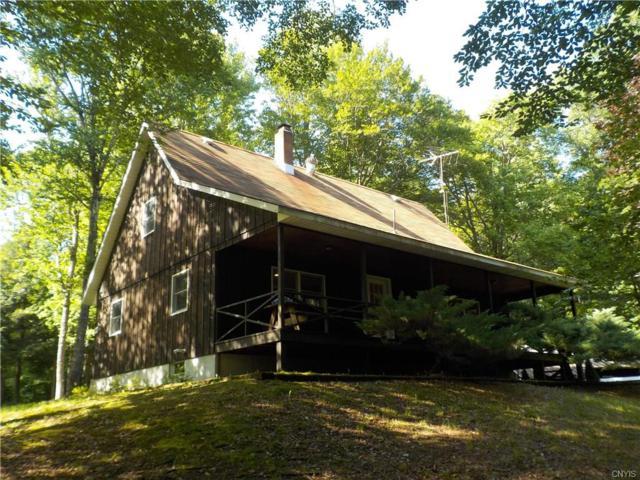 160 House Hill Road, Salisbury, NY 13454 (MLS #S1215079) :: Thousand Islands Realty