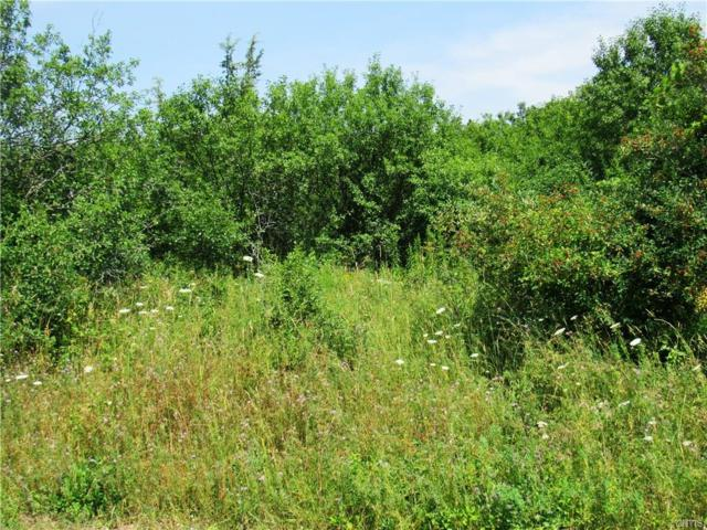 Lot 2 B Adams Road, Brownville, NY 13634 (MLS #S1215521) :: Thousand Islands Realty