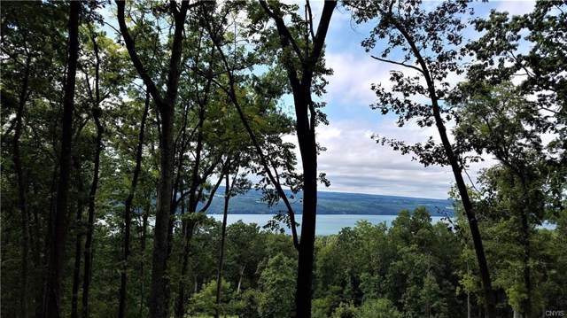 4419 Satterly Hill Road, Hector, NY 14818 (MLS #S1225703) :: Thousand Islands Realty
