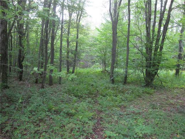 5.1 Acres Dairy Hill Road, Salisbury, NY 13454 (MLS #S1225856) :: BridgeView Real Estate Services