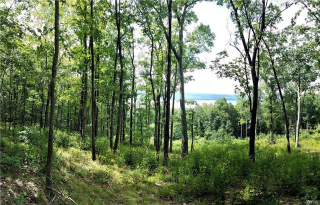 0 Satterly Hill, Parcel 9 Road, Hector, NY 14818 (MLS #S1225876) :: Lore Real Estate Services