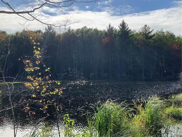 00 County Route 19, Williamstown, NY 13493 (MLS #S1226893) :: Thousand Islands Realty