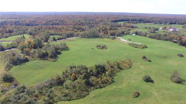 3916 Weiler Road, Lewis, NY 13325 (MLS #S1228635) :: MyTown Realty