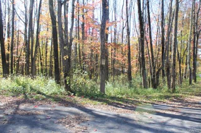 0 Wooliver Road, Orwell, NY 13302 (MLS #S1229382) :: The CJ Lore Team | RE/MAX Hometown Choice
