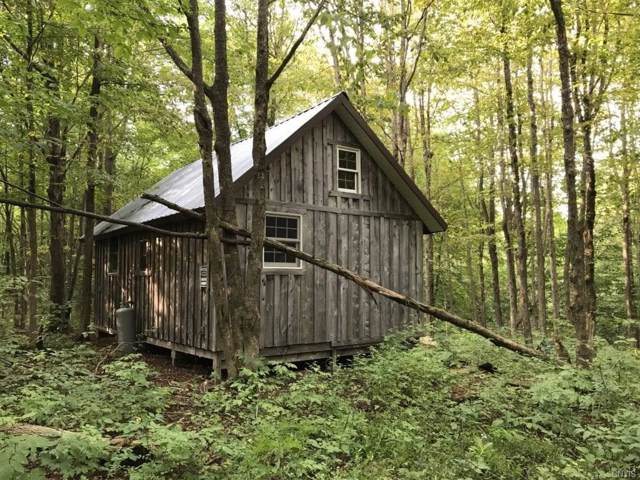 00 Quinn Road, German Flatts, NY 13407 (MLS #S1229428) :: Thousand Islands Realty