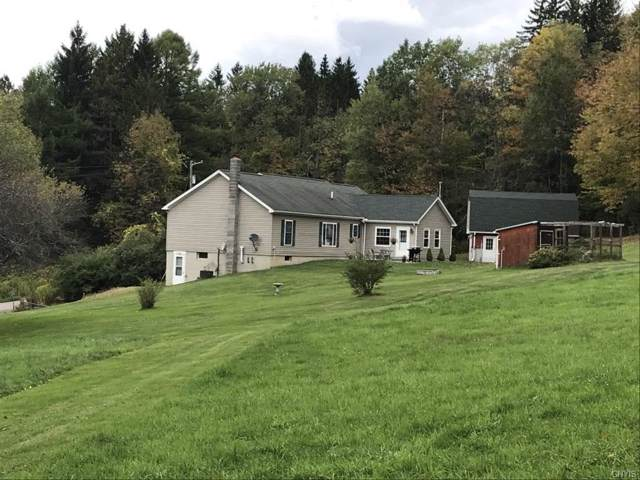 442 Hohreiter Road, Guilford, NY 13733 (MLS #S1229581) :: Thousand Islands Realty