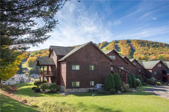 2136 Clute Road R11, Virgil, NY 13045 (MLS #S1231322) :: 716 Realty Group