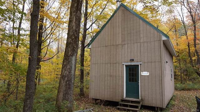 7738 County Route 17, Boylston, NY 13083 (MLS #S1232062) :: Thousand Islands Realty