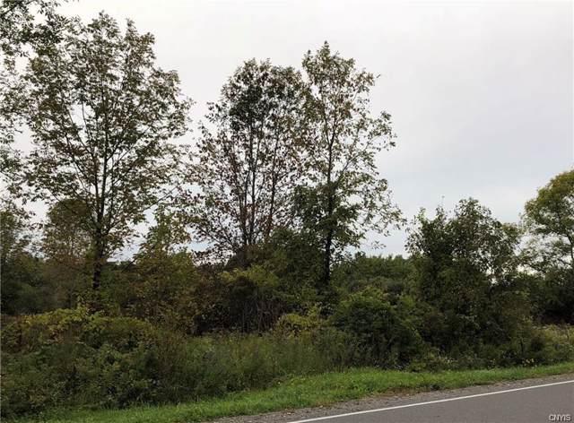 00 E Lake Road, Cazenovia, NY 13035 (MLS #S1232604) :: Thousand Islands Realty
