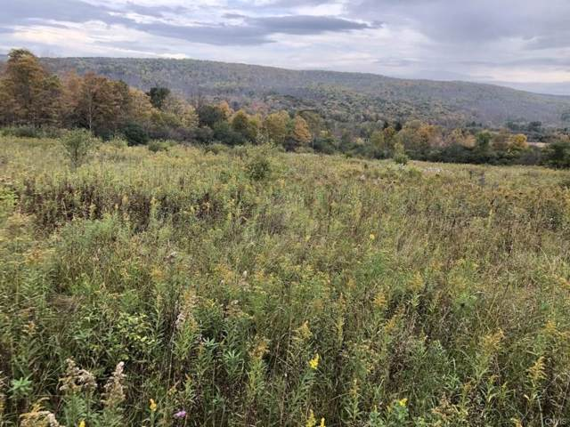 00 County Road 2A, West Almond, NY 14804 (MLS #S1232901) :: Thousand Islands Realty