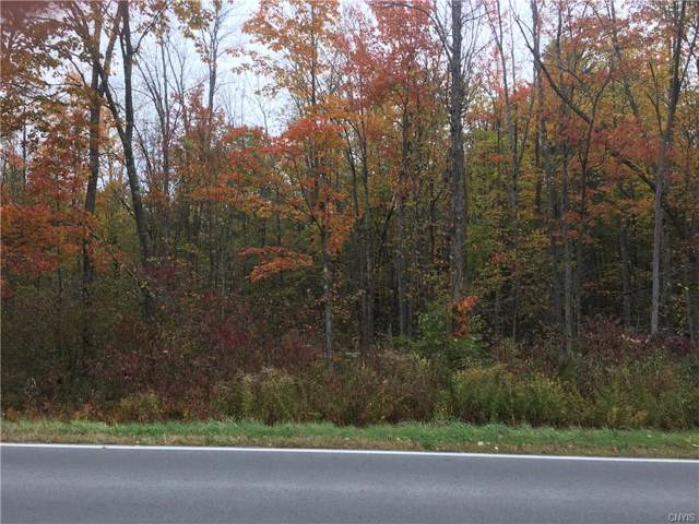0 Co Rt 45, Hastings, NY 13076 (MLS #S1233292) :: Robert PiazzaPalotto Sold Team