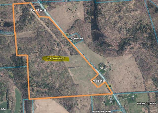 3080 County Route 22, Orwell, NY 13144 (MLS #S1233917) :: The Rich McCarron Team