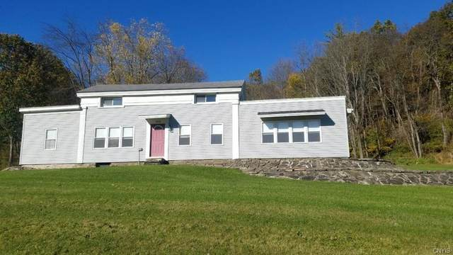 4419 County Route 119 N, Cameron, NY 14819 (MLS #S1235926) :: 716 Realty Group