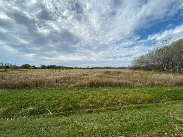 0 Co Route 8, Cape Vincent, NY 13618 (MLS #S1237588) :: Thousand Islands Realty
