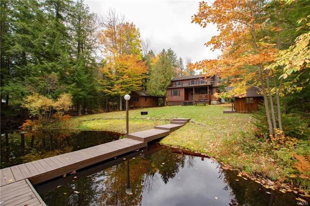 391 State Route 28, Inlet, NY 13360 (MLS #S1237718) :: BridgeView Real Estate Services