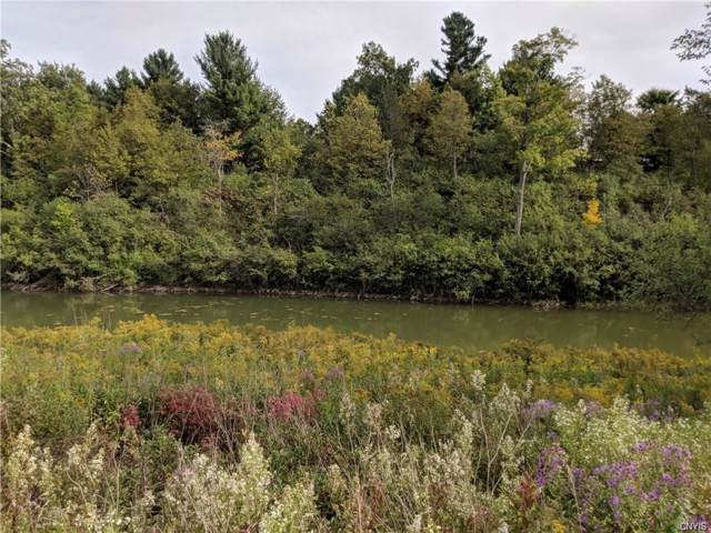0 (Lot 8B) Beaver Medows, Lyme, NY 13622 (MLS #S1238937) :: Robert PiazzaPalotto Sold Team