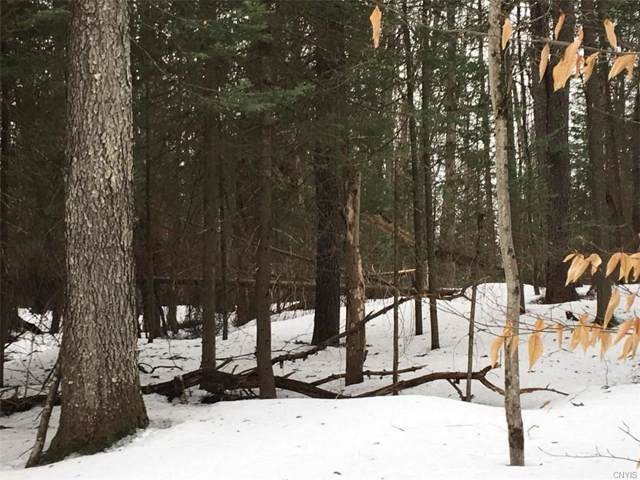 0 Little Beaver Lake Road S, Forestport, NY 13338 (MLS #S1239408) :: Robert PiazzaPalotto Sold Team