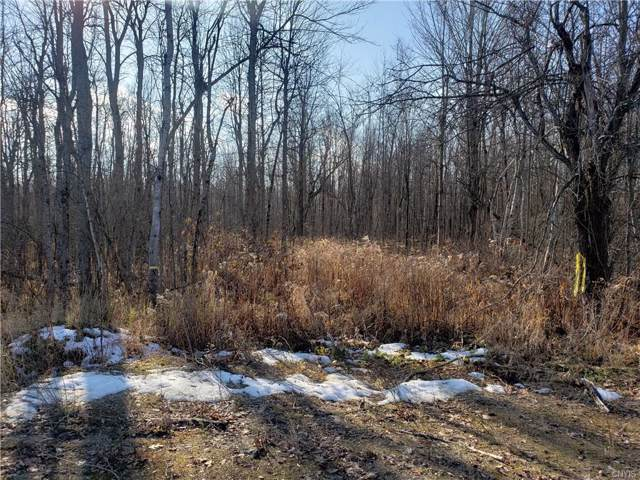 Lot b Hax Road, Orleans, NY 13656 (MLS #S1239754) :: Robert PiazzaPalotto Sold Team