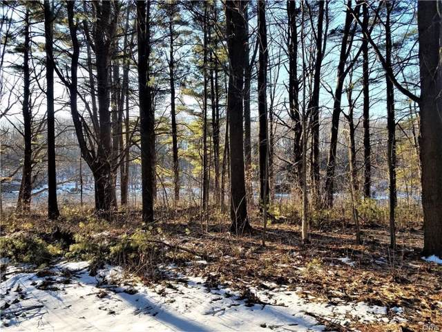 20650 Muskellunge Bay Lane, Hounsfield, NY 13685 (MLS #S1240591) :: BridgeView Real Estate Services