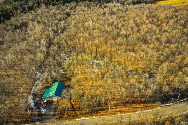 2481 Steuben Hill Road, Herkimer, NY 13350 (MLS #S1241008) :: 716 Realty Group