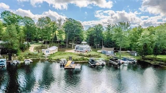 14443 Mccartha Lane, Diana, NY 13648 (MLS #S1242237) :: BridgeView Real Estate Services