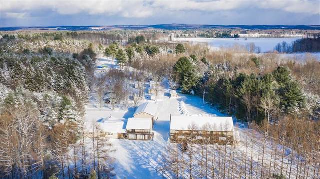 620 County Route 48, Albion, NY 13302 (MLS #S1242289) :: Updegraff Group