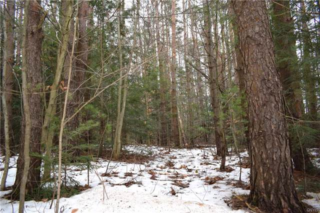 00 South Albion Road, Albion, NY 13302 (MLS #S1243697) :: Updegraff Group