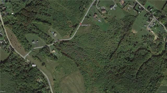 0 Haddad Drive, Herkimer, NY 13340 (MLS #S1245203) :: The CJ Lore Team   RE/MAX Hometown Choice