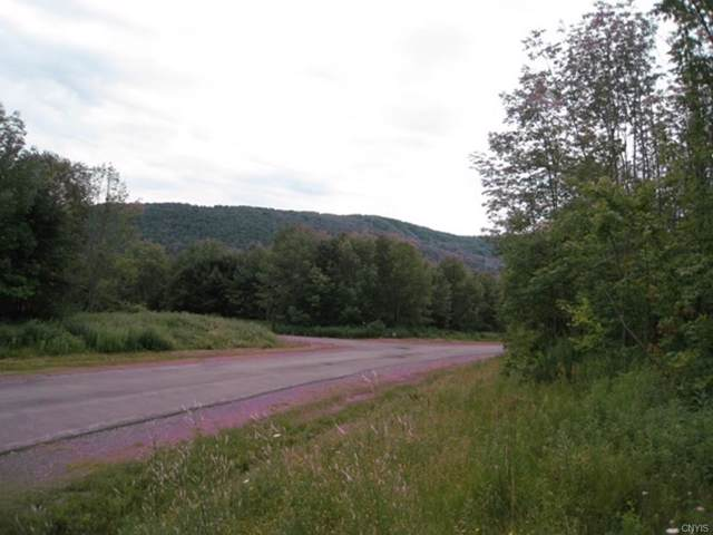 2155 Kypriotis Ext, Lot 66 Drive, Virgil, NY 13045 (MLS #S1247959) :: 716 Realty Group