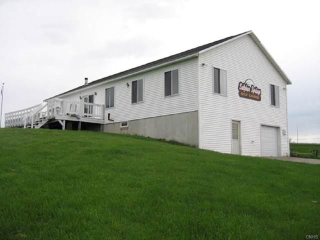 9256 Sulphur Springs Road Road, Paris, NY 13456 (MLS #S1248751) :: TLC Real Estate LLC