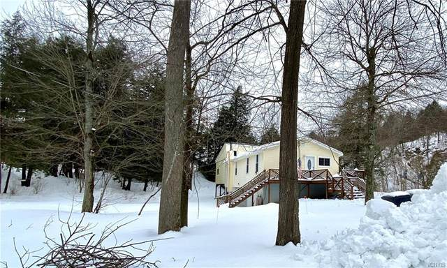 5667 State Highway 58, Gouverneur, NY 13642 (MLS #S1249097) :: Updegraff Group
